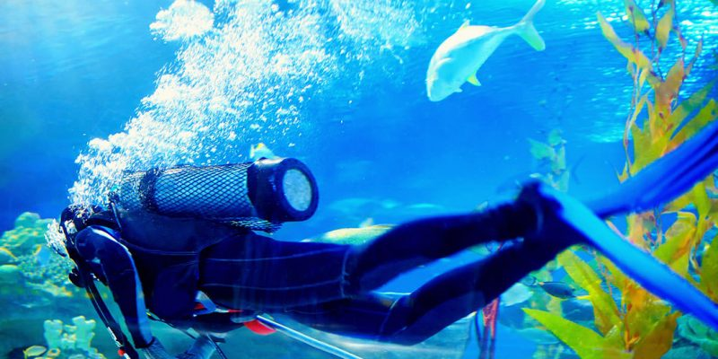 What to Expect on Your First Scuba Dive