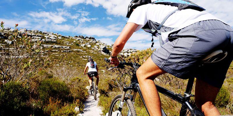 mountain bikers on trail